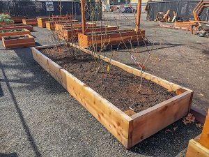 Garden Grade Bed